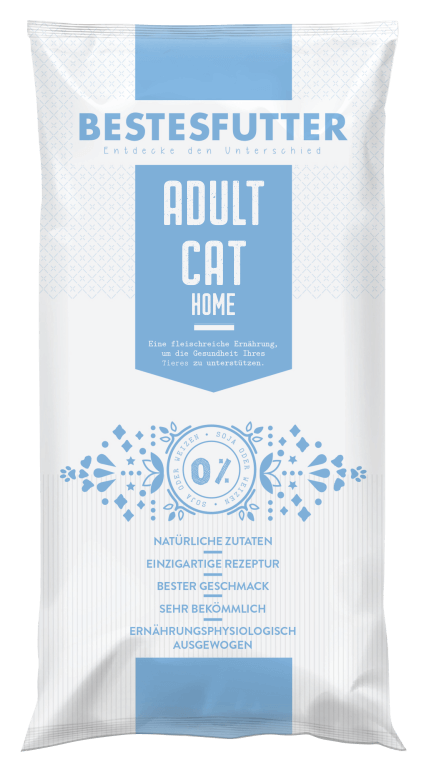 katzenfutter_bestesfutter_adult_cat_home